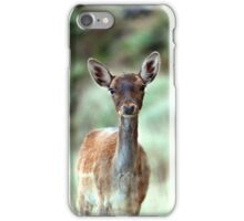 Fallow Deer dama dama case (H) iPhone Case/Skin