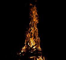 Phoenix Rises by Justin Delaney