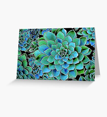 Spring Gems ~ Emerald Succulents Greeting Card
