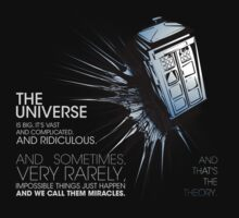 Doctor Who - ...and that's the theory (dark textiles) by glassCurtain