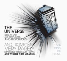 Doctor Who - ...and that's the theory (bright textiles) by glassCurtain