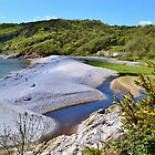 Pwll Du Bay, Gower Peninsula by Paula J James
