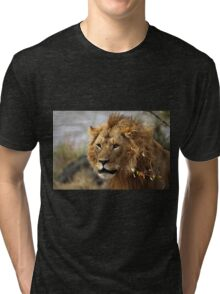 Cat: Large Male Lion Looking Intently as He Comes Out of the Bush, Maasai Mara, Kenya  Tri-blend T-Shirt