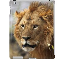 Cat: Large Male Lion Looking Intently as He Comes Out of the Bush, Maasai Mara, Kenya  iPad Case/Skin