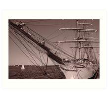 Sail Boston  Art Print