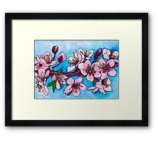 Spring Blooms ~ Cherry Blossoms Framed Print