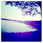 Lake light by zamix