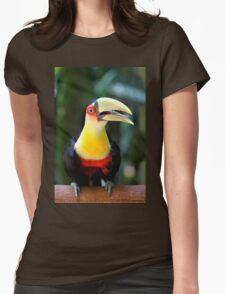 Red Breasted Toucan at Iguassu, Brazil  Womens Fitted T-Shirt
