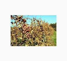 A white grape branch in the vineyard in the fall Unisex T-Shirt