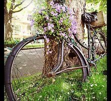 Garden Bike by RubyTuesday72