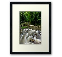 Cave Creek - Springbrook National Park Framed Print