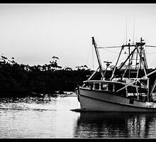 Fishing Trawler by Daral Chapman