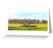 Windrowing the canola.... Greeting Card