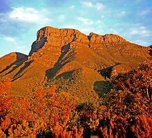 Bluff Knoll at Sunset WA by Tony Brown