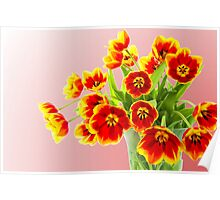 Tulips in Yellow and Red Poster