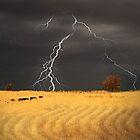 Summer Storm - Mine Road, Kanmantoo, South Australia by Mark Richards