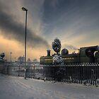 Train, Severn Valley Railway, Kidderminster by Alex Drozd