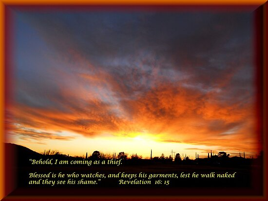 Behold, I am coming as a thief!  Rev 16:15 by Ann  Warrenton
