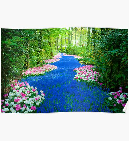 Flower Path @ Keukenhof Poster