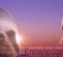 Knowledge is Power Sloth Sticker