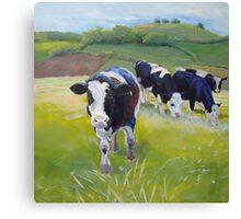 Holstein Friesian Cows Painting Canvas Print