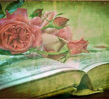 The Gardening Diary by Astrid Ewing Photography