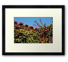 Rooftop Garden Corner Framed Print