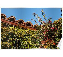 Rooftop Garden Corner Poster
