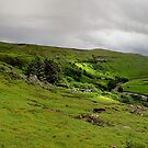 Crackpot Hall and Upper Swaledale by Mat Robinson
