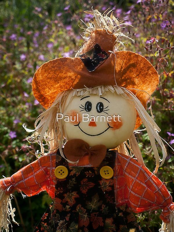 Smiley Scarecrow by Paul Barnett