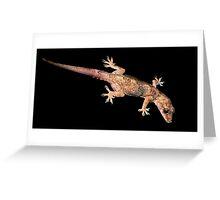 Mediterranean Gecko. Greeting Card