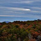 Autumn up in Blue Ridge by Eileen Brymer