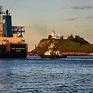 NSS GRANDEUR CARGO SHIP - NEWCASTLE HARBOUR NSW AUSTRALIA by Phil Woodman