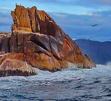 Fascinating rock colours - off Eaglehawk Neck, Tasmania, Australia by PC1134