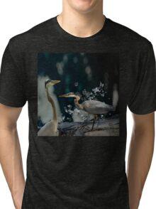 Couple Birds  Tri-blend T-Shirt