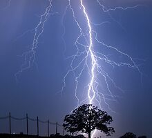 Lightning Bolts Striking Behind Tree by Mark Van Scyoc