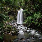 Hopetoun Falls by Bevlea Ross