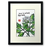 Lovage (the Herb Series) Framed Print