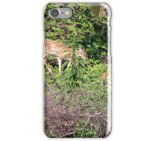 Fawns iPhone Case/Skin