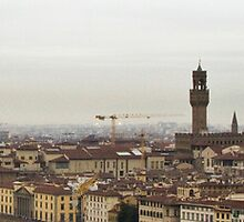Firenze Panoramic  by Michelle Lia
