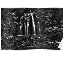 Ellinjaa Falls HDR - QLD - Australia Poster