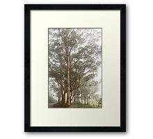 Misty Road 30-06-2012 Framed Print
