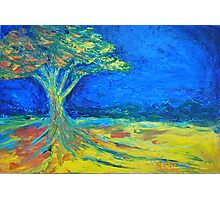 tree in field of loneliness Photographic Print