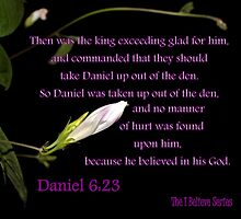 Daniel 6:23 - Because he BELIEVED in his God by aprilann