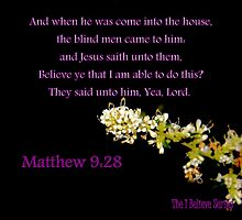 Matthew 9:28 - BELIEVE ye that I am able to do this? by aprilann