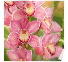 Orchid Joy Poster