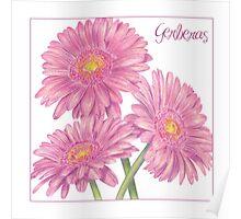 Cheerful Gerberas Poster