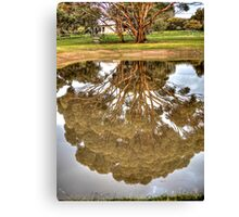 House in reflection Canvas Print