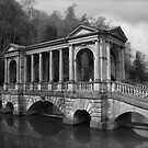 Palladian Bridge, Bath by James Taylor