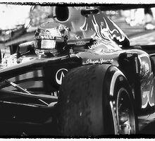 Sebastian Vettel by Paul Golz